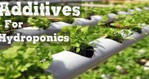 Grow additives